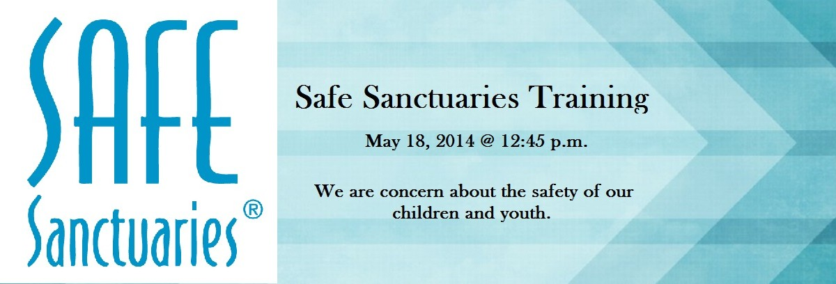 Safe Sancturies Blue Banner rr